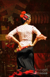 Flamenco Series #5 | ©2-16 Mary Machare